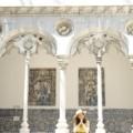 ポルトガルの伝統に浸る! 国立アズレージョ博物館